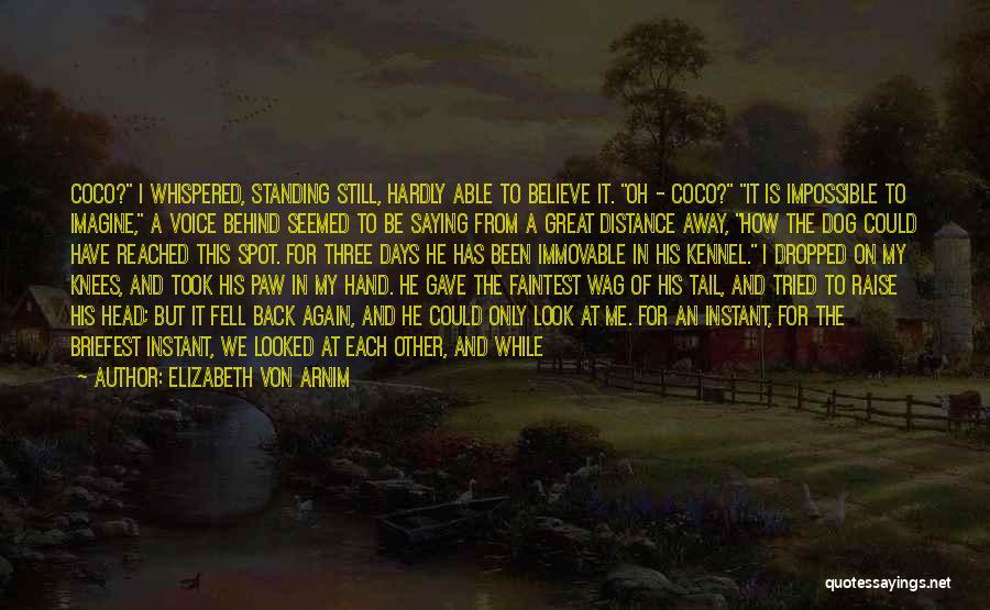I Love Him But He Don't Love Me Quotes By Elizabeth Von Arnim