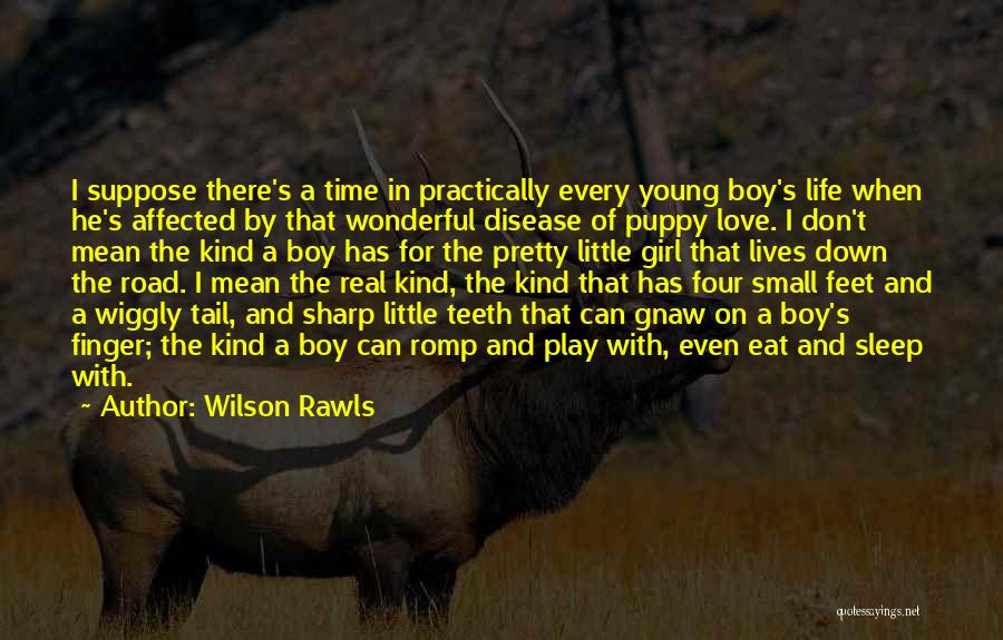 I Love My Puppy Quotes By Wilson Rawls