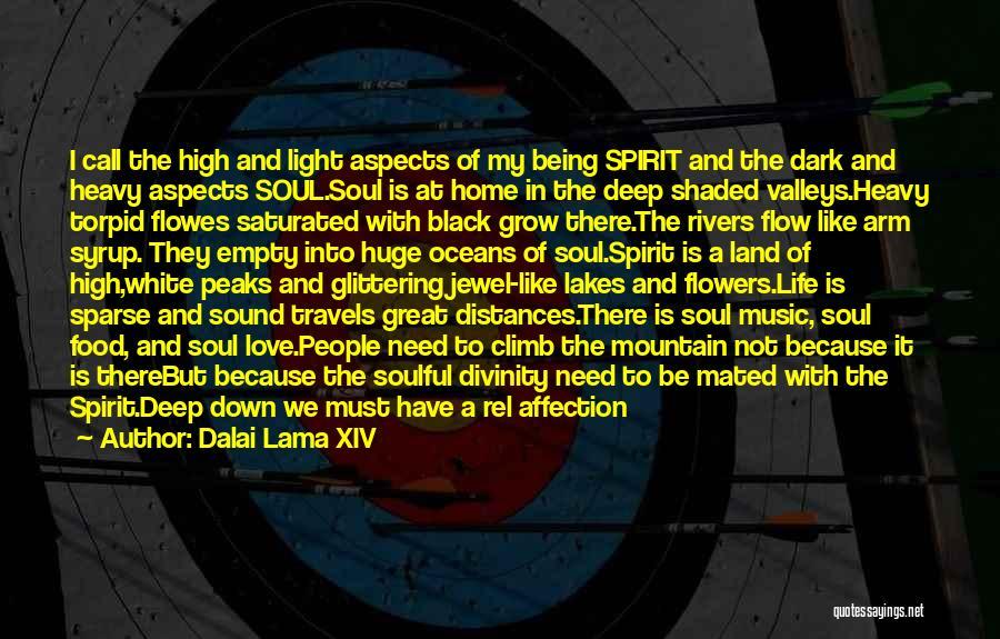 I Love Soul Music Quotes By Dalai Lama XIV