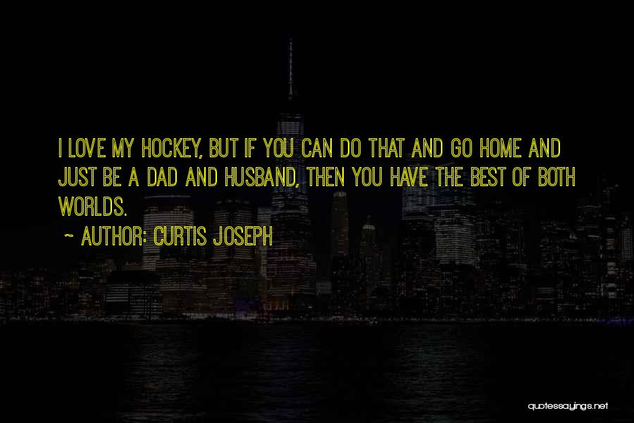I Love You Dad Quotes By Curtis Joseph