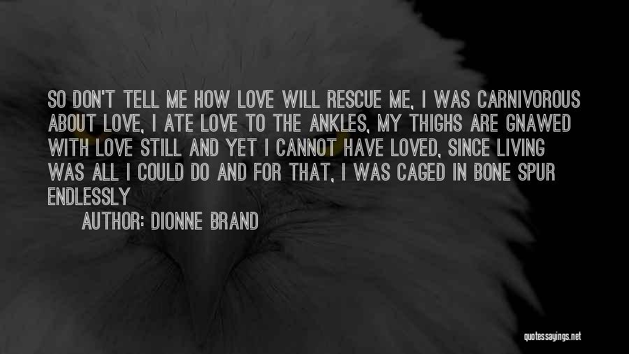 I Love You Endlessly Quotes By Dionne Brand