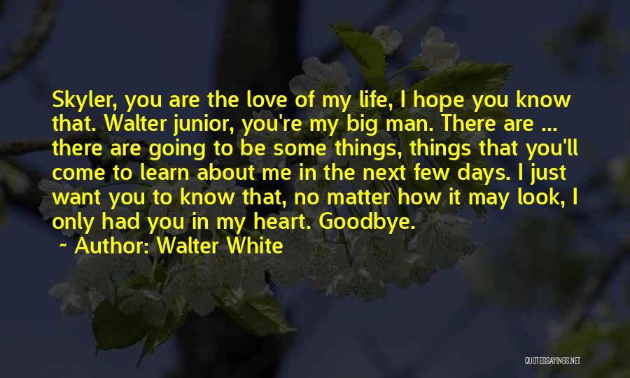 I Love You Man Goodbye Quotes By Walter White
