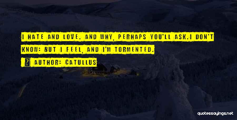I Love You More Poems And Quotes By Catullus