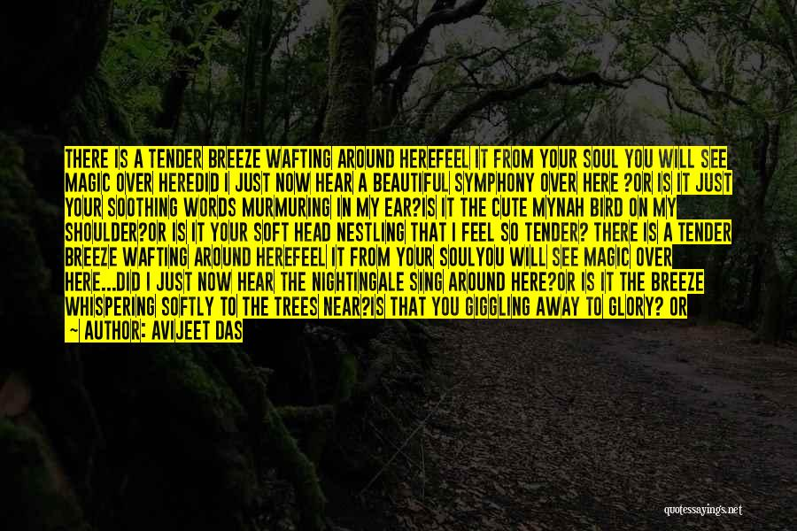 I Love Your Beautiful Soul Quotes By Avijeet Das