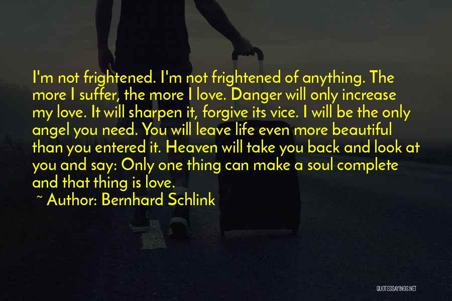 I Love Your Beautiful Soul Quotes By Bernhard Schlink