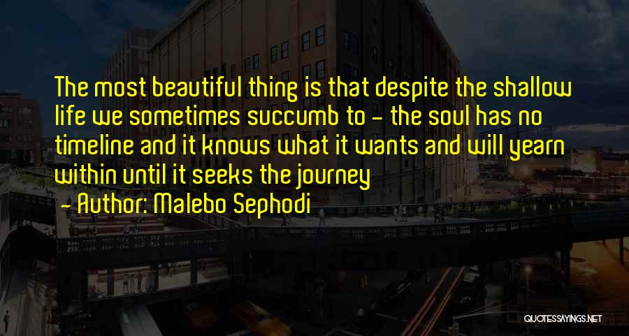 I Love Your Beautiful Soul Quotes By Malebo Sephodi