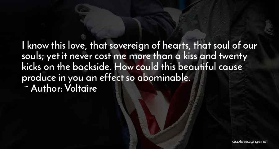 I Love Your Beautiful Soul Quotes By Voltaire