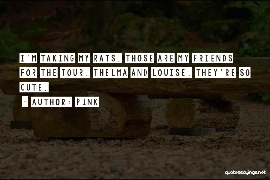 I M Cute Quotes By Pink