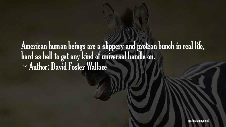 I May Be Hard To Handle Quotes By David Foster Wallace