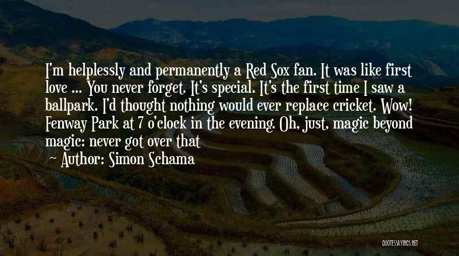 I Never Thought Love Quotes By Simon Schama