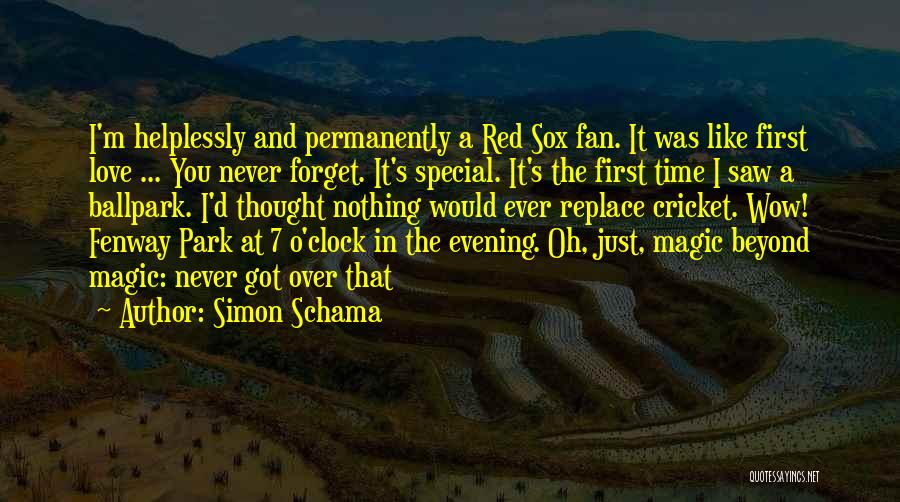 I Never Thought That Quotes By Simon Schama