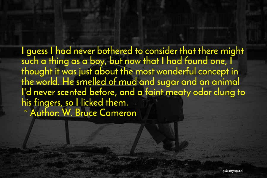 I Never Thought That Quotes By W. Bruce Cameron