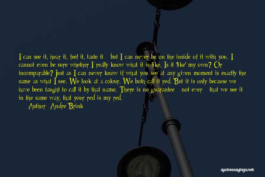 I Only See You Quotes By Andre Brink