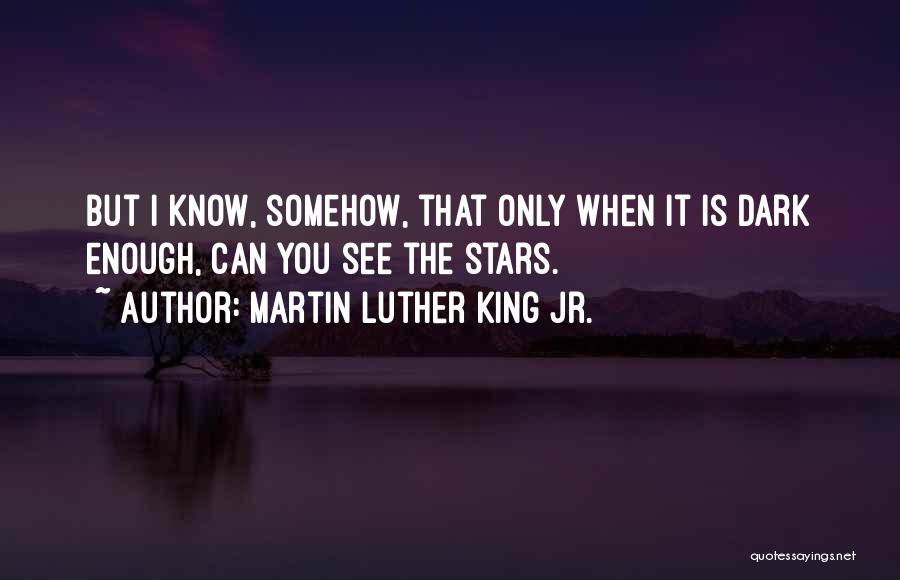 I Only See You Quotes By Martin Luther King Jr.