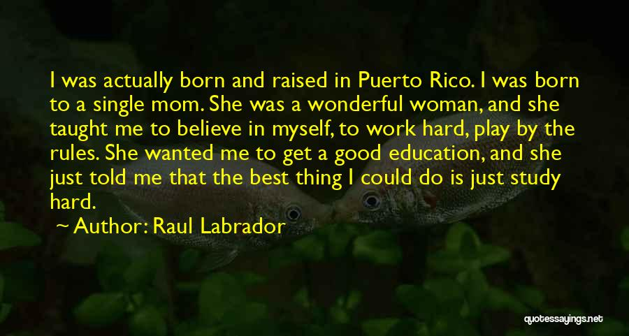 I Play Hard To Get Quotes By Raul Labrador