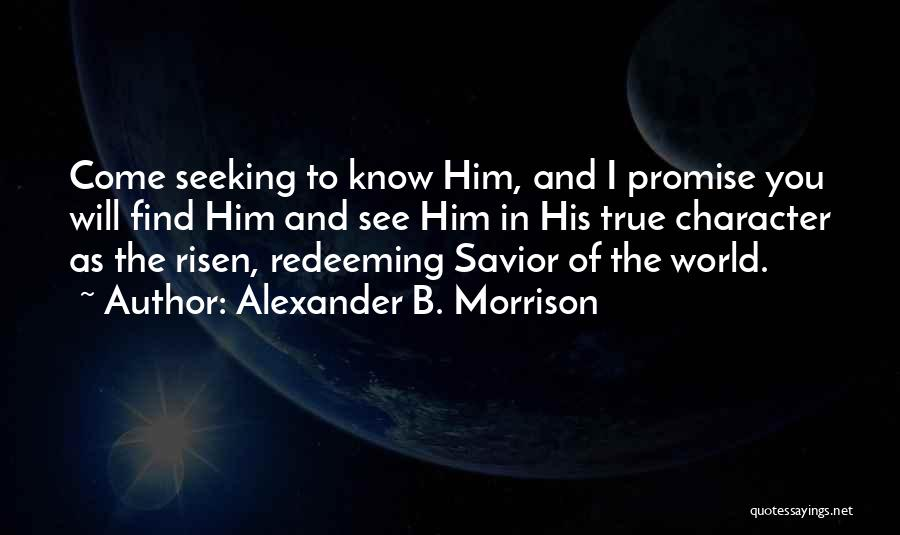 I Promise You The World Quotes By Alexander B. Morrison