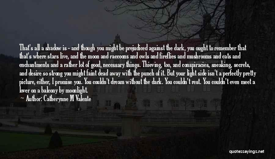 I Promise You The World Quotes By Catherynne M Valente