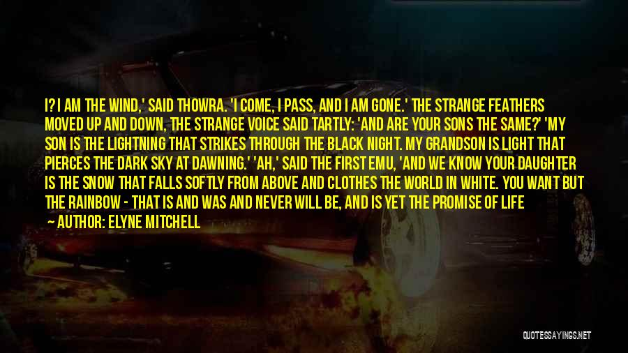 I Promise You The World Quotes By Elyne Mitchell