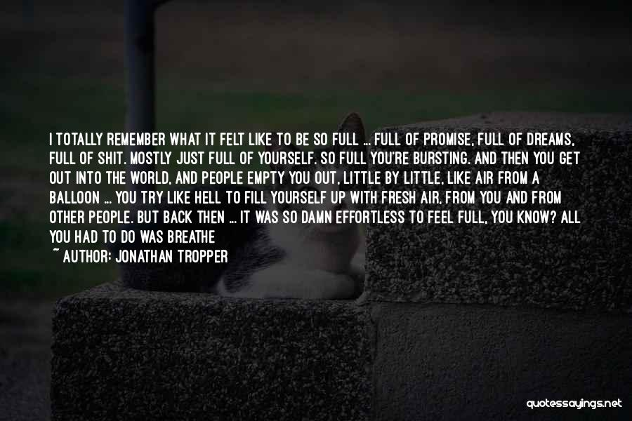 I Promise You The World Quotes By Jonathan Tropper