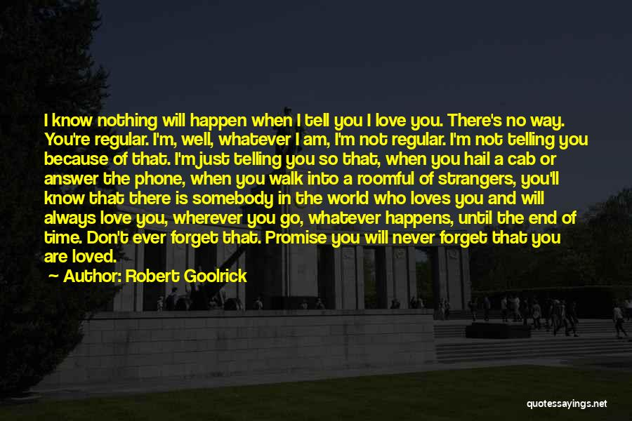 I Promise You The World Quotes By Robert Goolrick