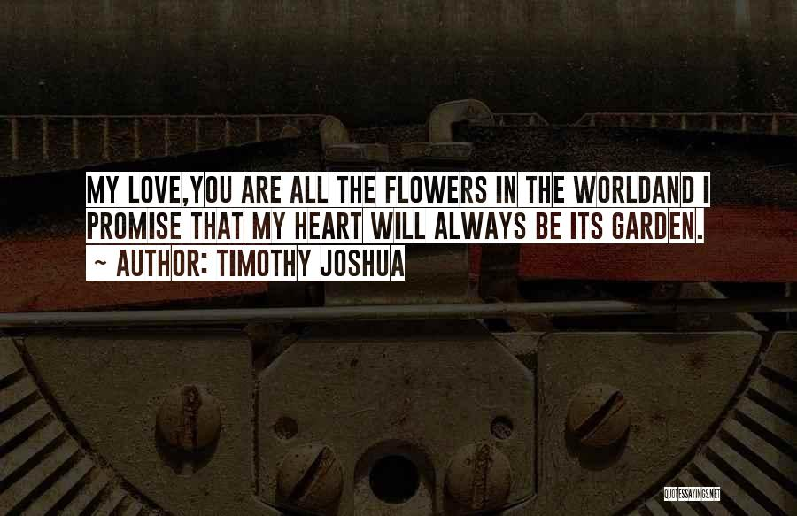 I Promise You The World Quotes By Timothy Joshua