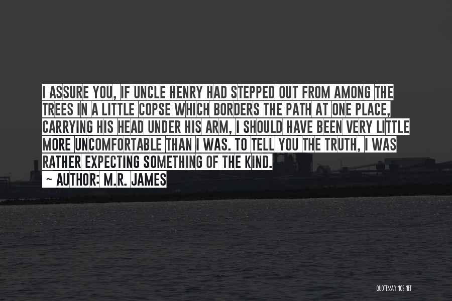 I.r.a Quotes By M.R. James