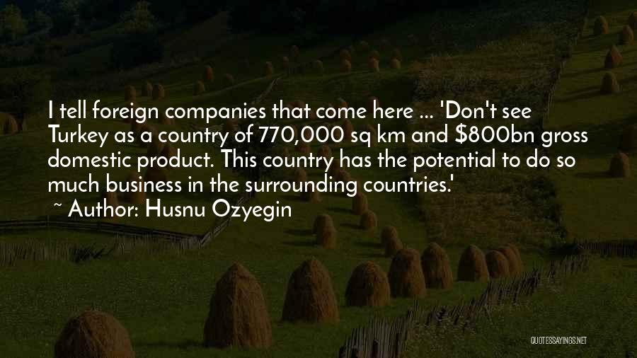 I See Potential Quotes By Husnu Ozyegin