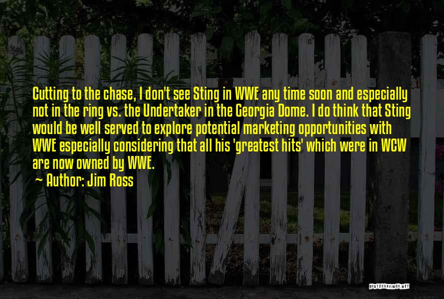 I See Potential Quotes By Jim Ross