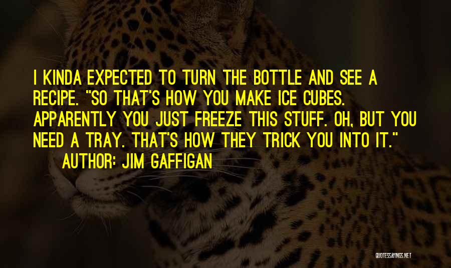 I See You Funny Quotes By Jim Gaffigan