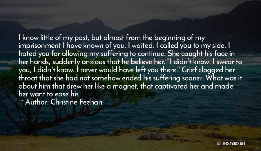 I See Your Pain Quotes By Christine Feehan