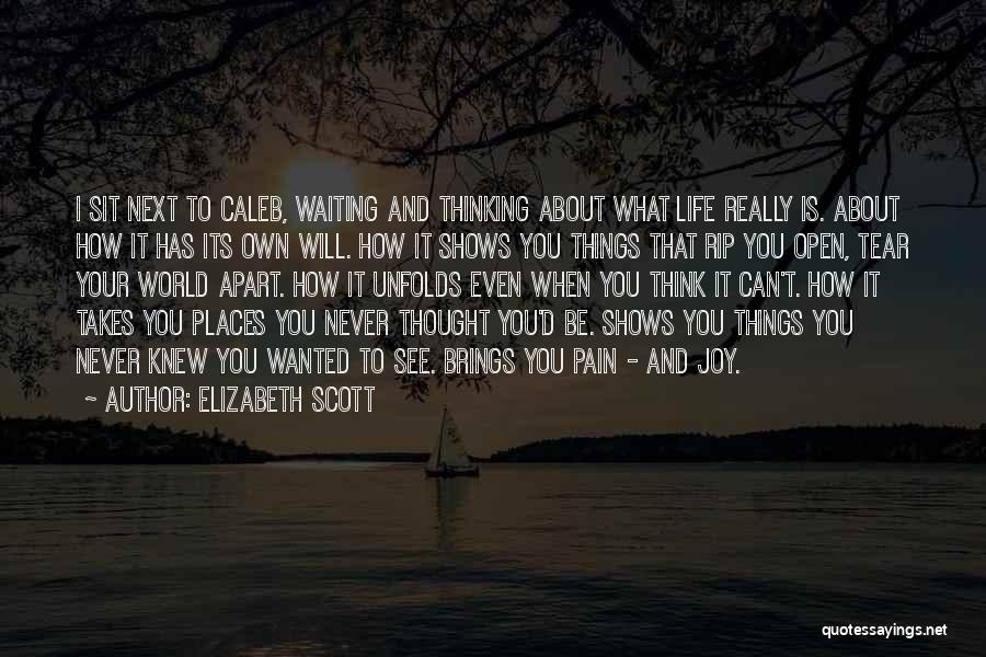 I See Your Pain Quotes By Elizabeth Scott