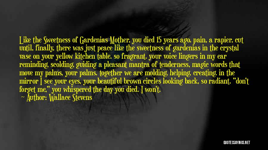I See Your Pain Quotes By Wallace Stevens