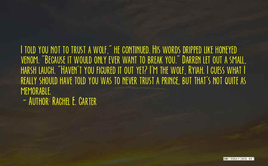 I Should Have Told You Quotes By Rachel E. Carter