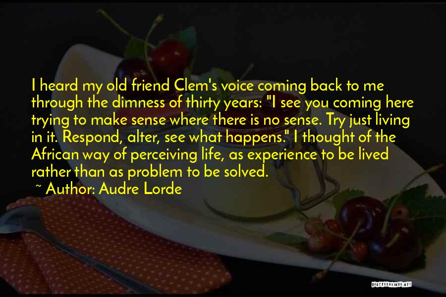 I Thought You're My Friend Quotes By Audre Lorde