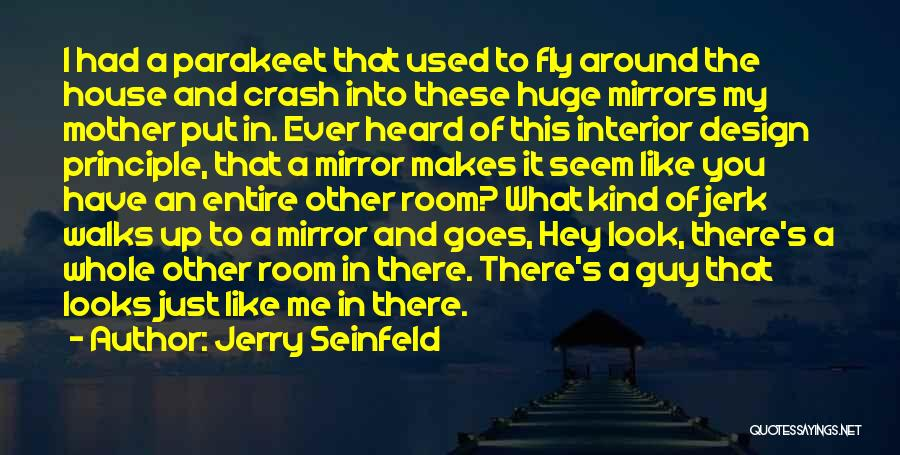 I Used To Look Up To You Quotes By Jerry Seinfeld