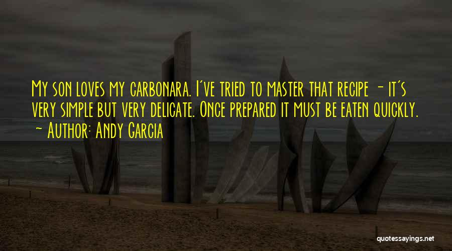 I Ve Tried Quotes By Andy Garcia