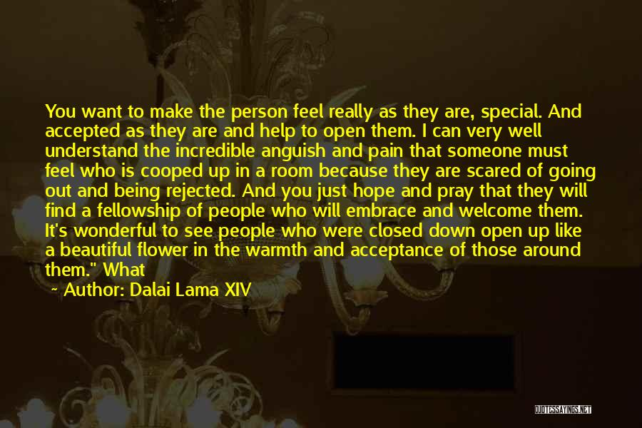 I Want Someone Like You Quotes By Dalai Lama XIV