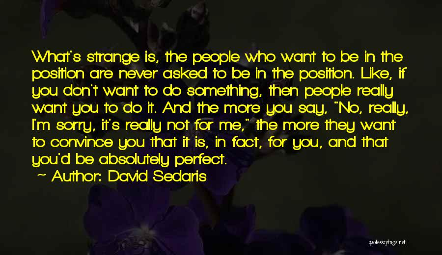 I Want To Be Something More Quotes By David Sedaris