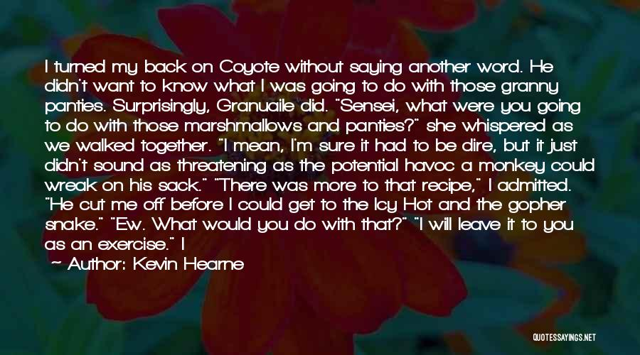 I Want To Get Back Together With You Quotes By Kevin Hearne