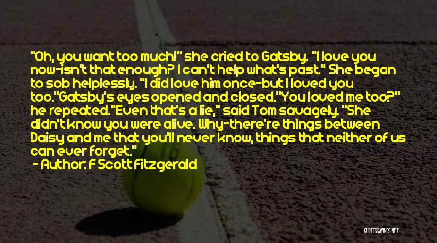 I Want You To Forget Me Quotes By F Scott Fitzgerald