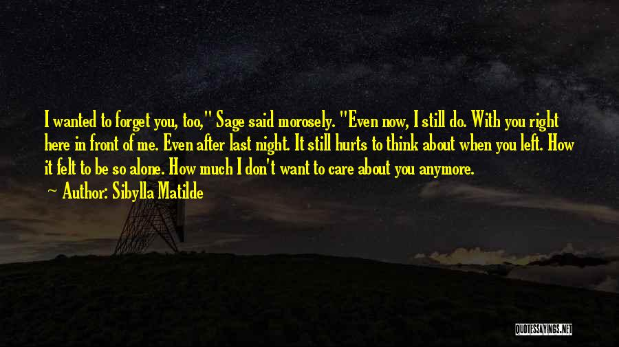 I Want You To Forget Me Quotes By Sibylla Matilde
