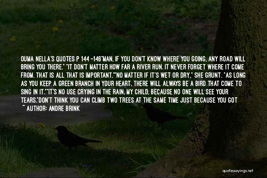 I Will Always Be There For You Quotes By Andre Brink