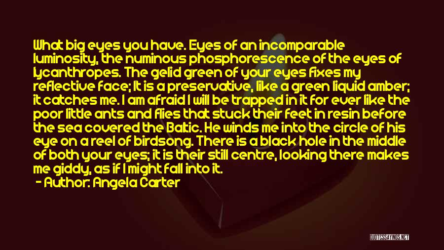 I Will Be Still Quotes By Angela Carter