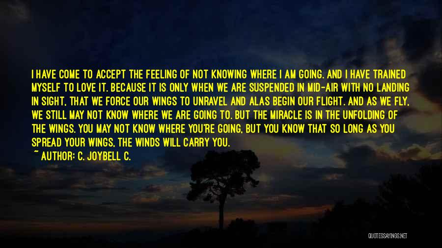 I Will Carry You Love Quotes By C. JoyBell C.
