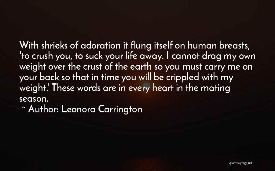 I Will Carry You Love Quotes By Leonora Carrington