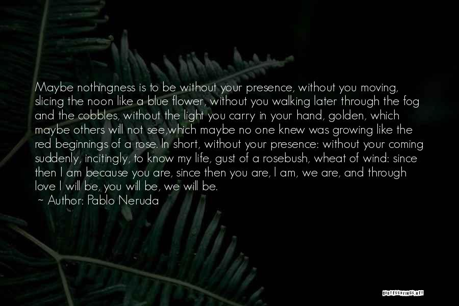 I Will Carry You Love Quotes By Pablo Neruda
