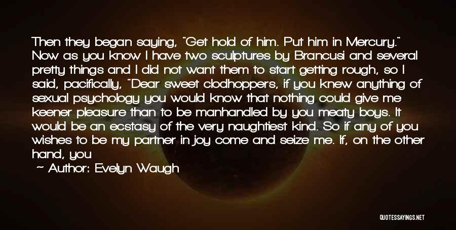 I Wish I Knew Then Quotes By Evelyn Waugh