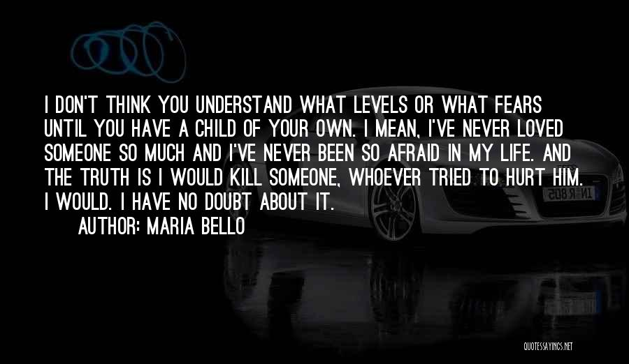 I Would Never Hurt You Quotes By Maria Bello