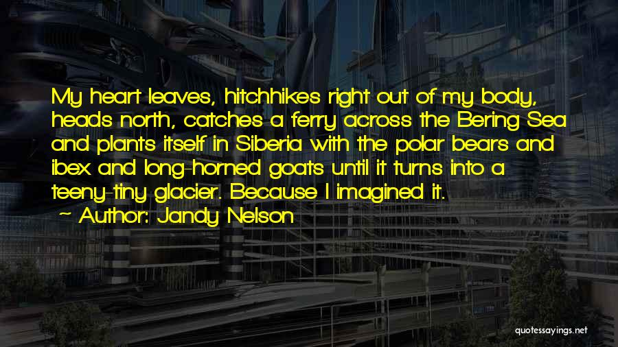 Ibex Quotes By Jandy Nelson