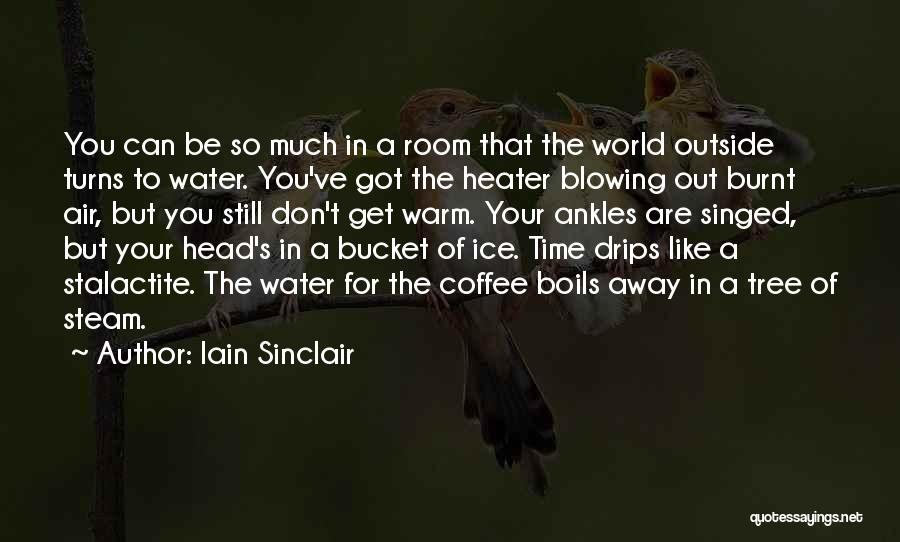 Ice Bucket Quotes By Iain Sinclair